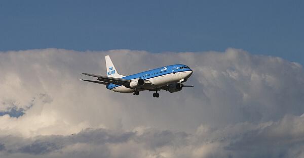 find a cheap flight