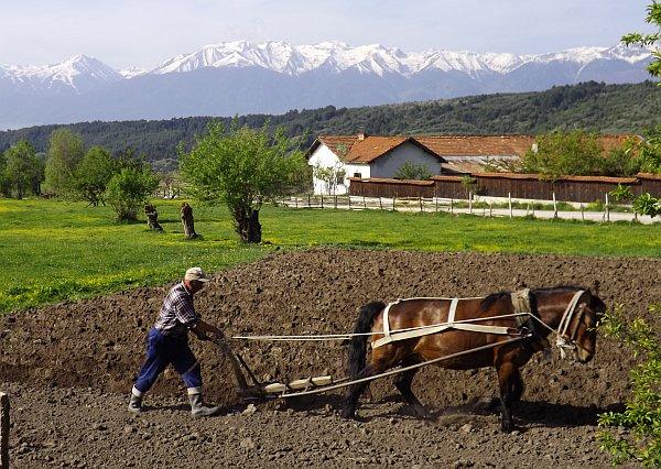 education through travel Bulgaria