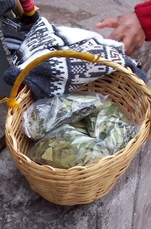 The Good/Bad Coca Leaf in Peru and the Andes Mountains
