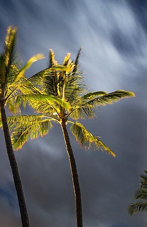 When to go to that vacation destination? Not during hurricane season...