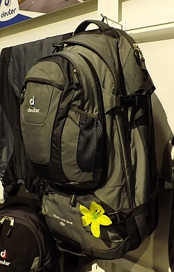Deuter travel backpack