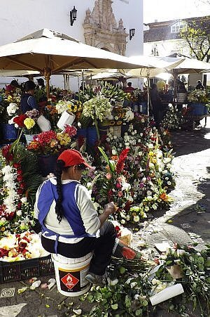 Travel prices in Ecuador, including bargain flowers in the Cuenca market
