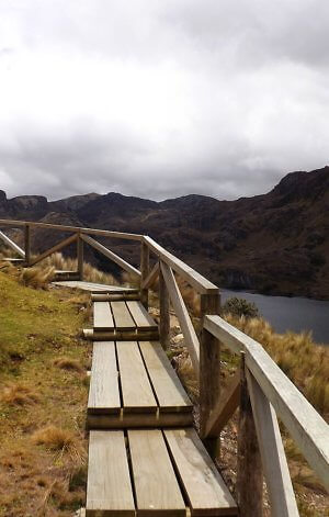 You can still find summer travel bargains in Ecuador. Walkway in Las Cajas National Park near Cuenca