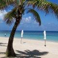 Roatan Island Honduras beach