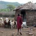 Maasai village travel story