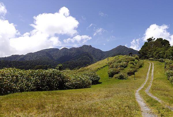 countryside near Volcan Baru