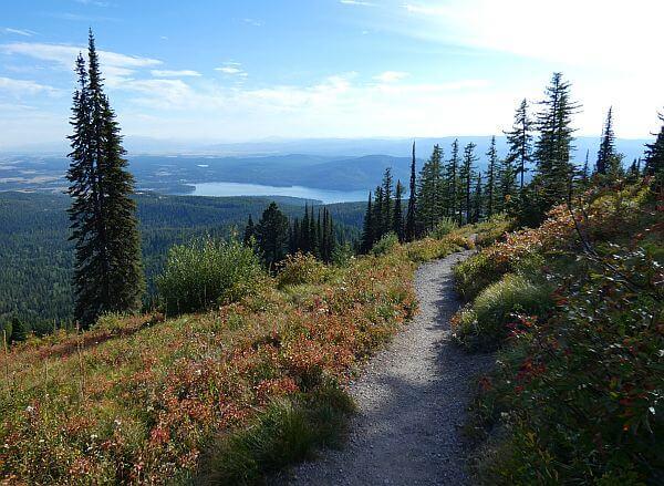 Whitefish mountain hike