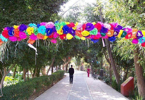 Parque Benito Juarez